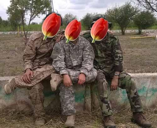 نیروهای غیر ایرانی جبهه مقاومت